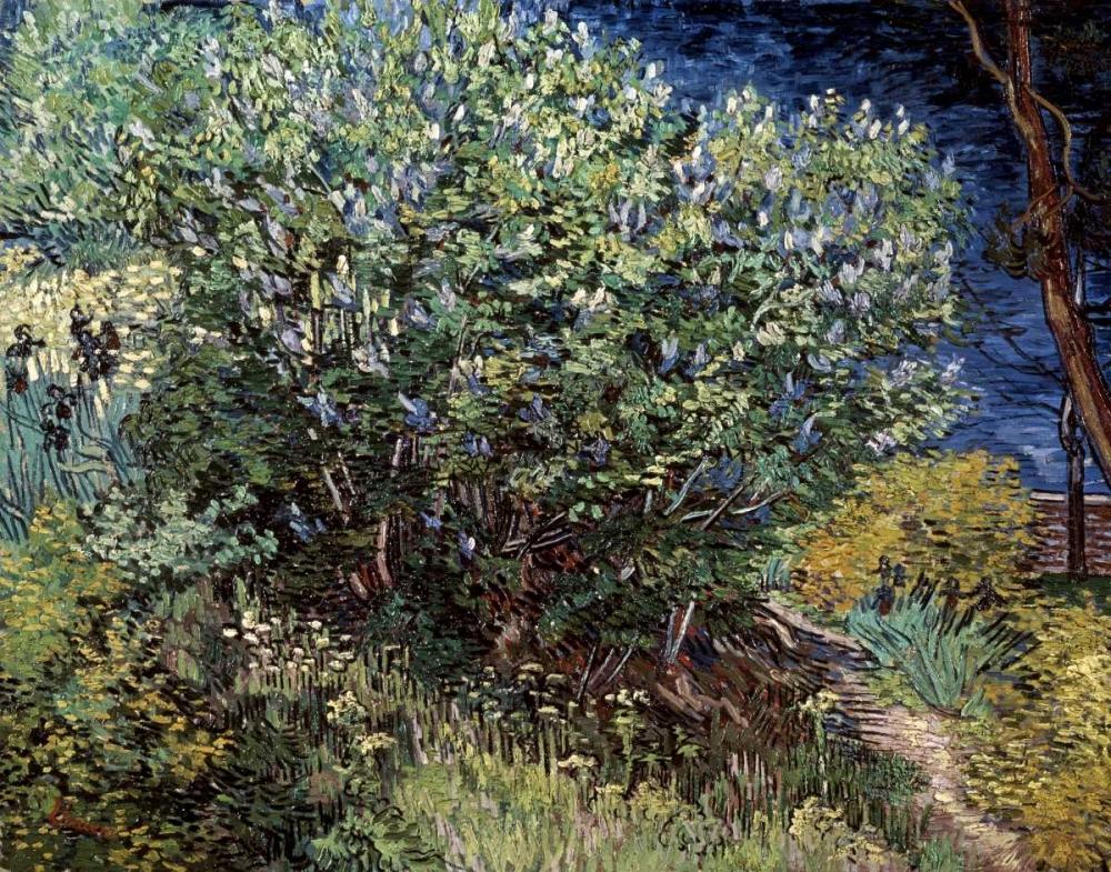 konfigurieren des Kunstdrucks in Wunschgröße Lilacs von Van Gogh, Vincent