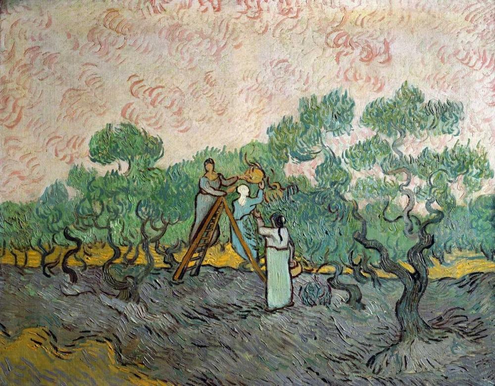 konfigurieren des Kunstdrucks in Wunschgröße Women Picking Olives von Van Gogh, Vincent