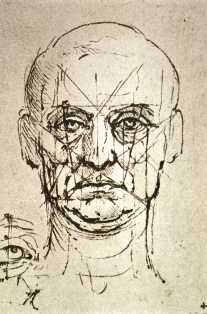 konfigurieren des Kunstdrucks in Wunschgröße Proportions of the Face von Da Vinci, Leonardo