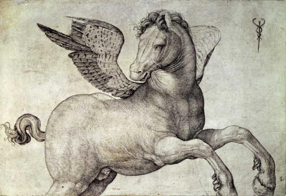 De Barbari, Jacopo