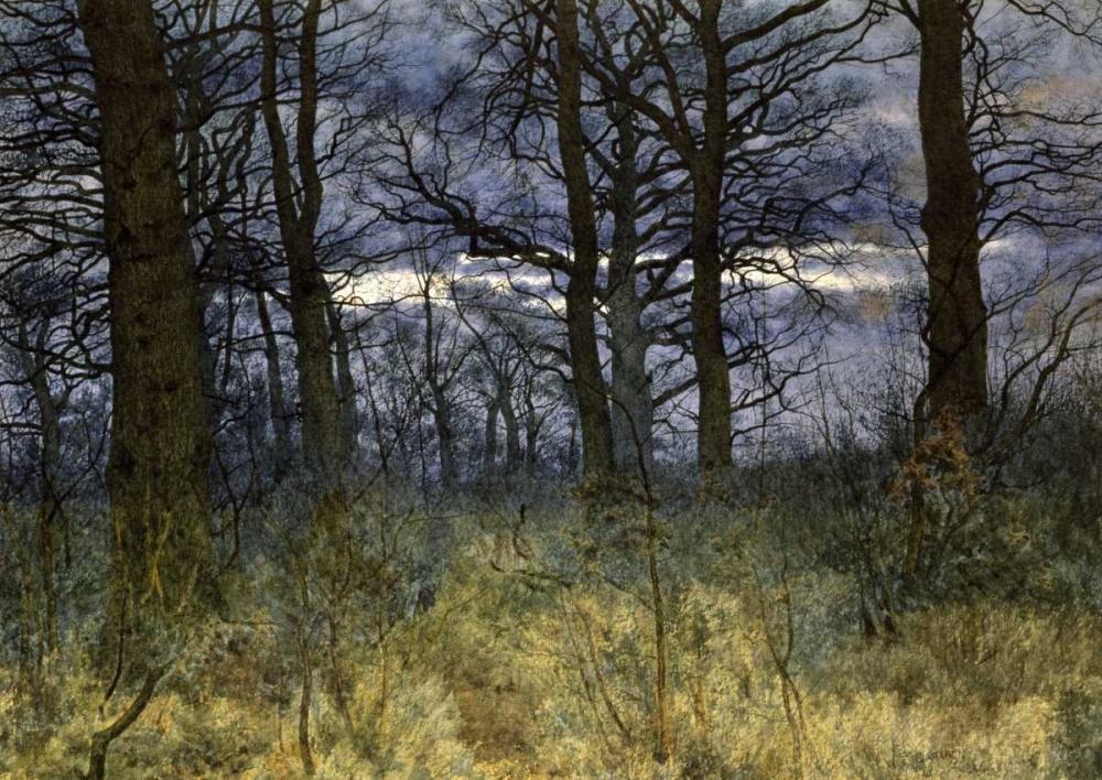 Garden, William Fraser
