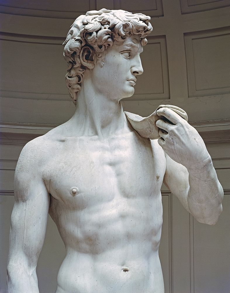 konfigurieren des Kunstdrucks in Wunschgröße David (Detail I) von Michelangelo