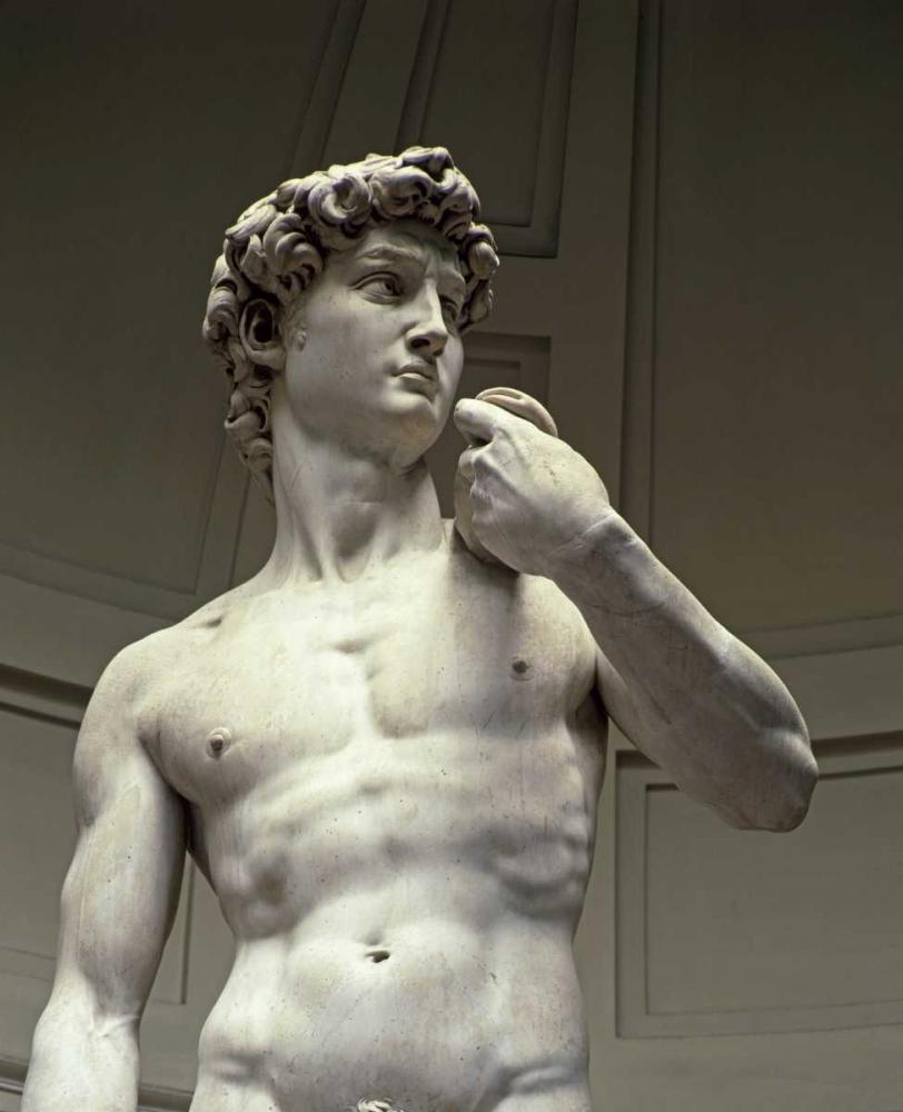 konfigurieren des Kunstdrucks in Wunschgröße David - Detail II von Michelangelo