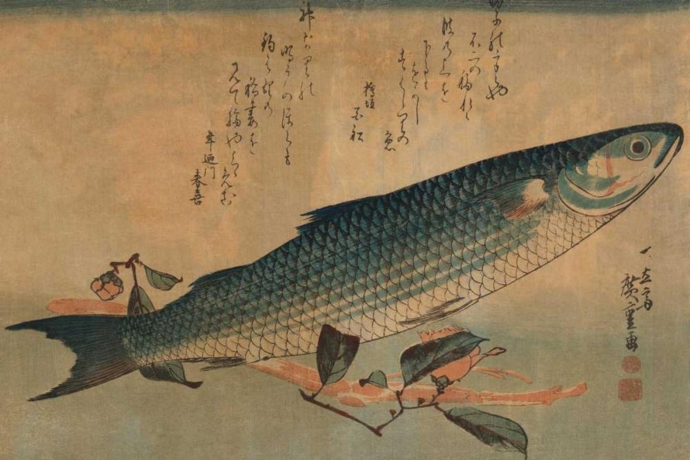 Striped mullet, 1834 von Hiroshige, Ando <br> max. 51 x 33cm <br> Preis: ab 10€
