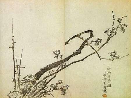 konfigurieren des Kunstdrucks in Wunschgröße A Branch Of Plum 1798 von Hokusai