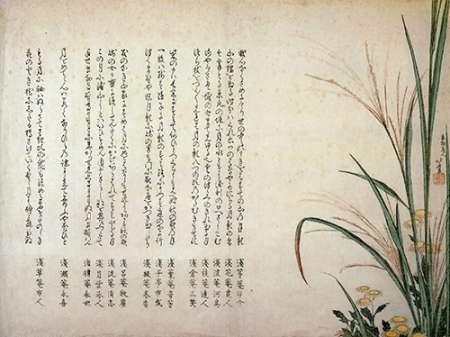 konfigurieren des Kunstdrucks in Wunschgröße Asters And Susuki Grass 1805 von Hokusai
