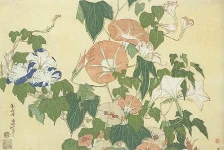 konfigurieren des Kunstdrucks in Wunschgröße Convolvulus And Tree Frog von Hokusai