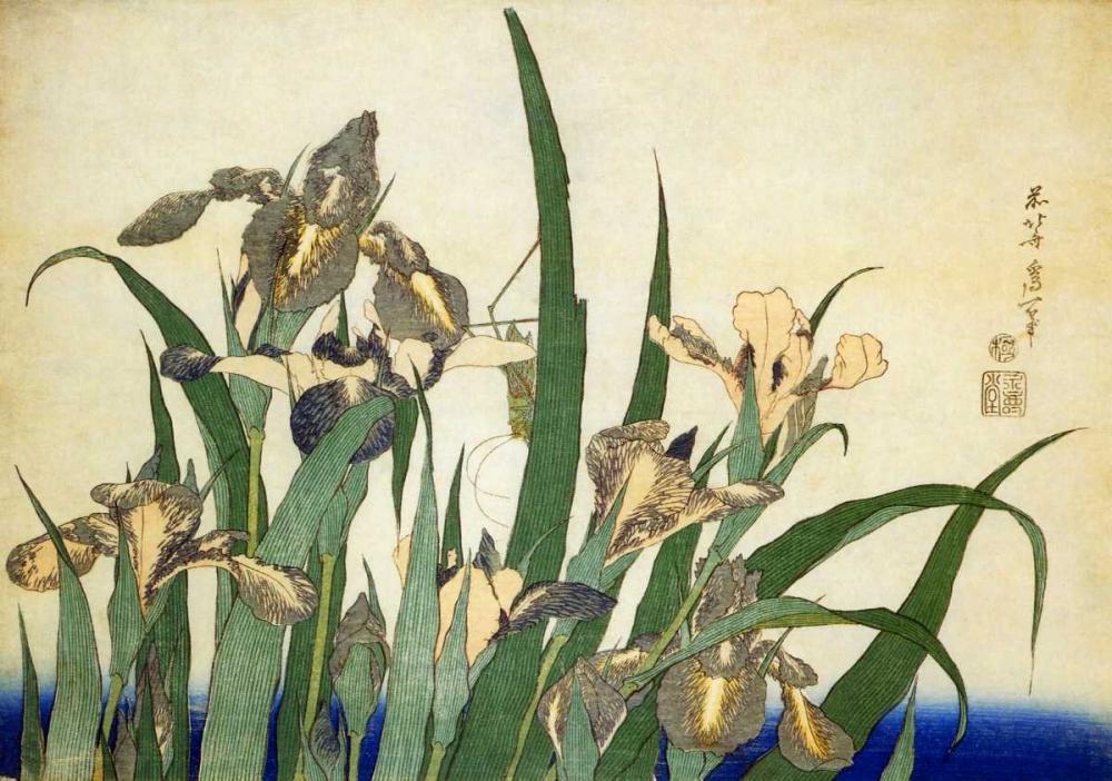 konfigurieren des Kunstdrucks in Wunschgröße Irises von Hokusai