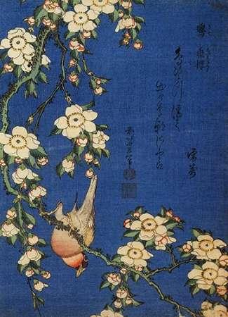 konfigurieren des Kunstdrucks in Wunschgröße Weeping Cherry And A Bullfinch von Hokusai