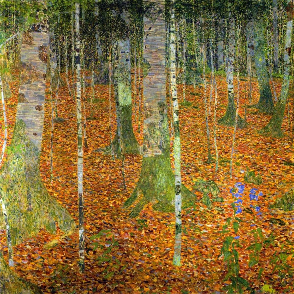 flowers and plants,trees,landscapes and scenery,forests and woods,Birch Trees,Floral,Landscape,Nature,,,373315,Birch Wood 1903,Klimt, Gustav,Square