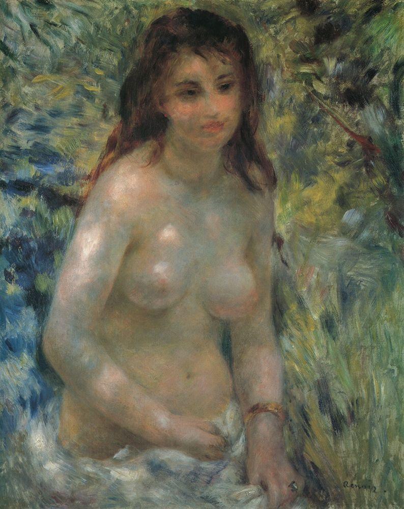 konfigurieren des Kunstdrucks in Wunschgröße Nude In The Sunlight von Renoir, Pierre-Auguste