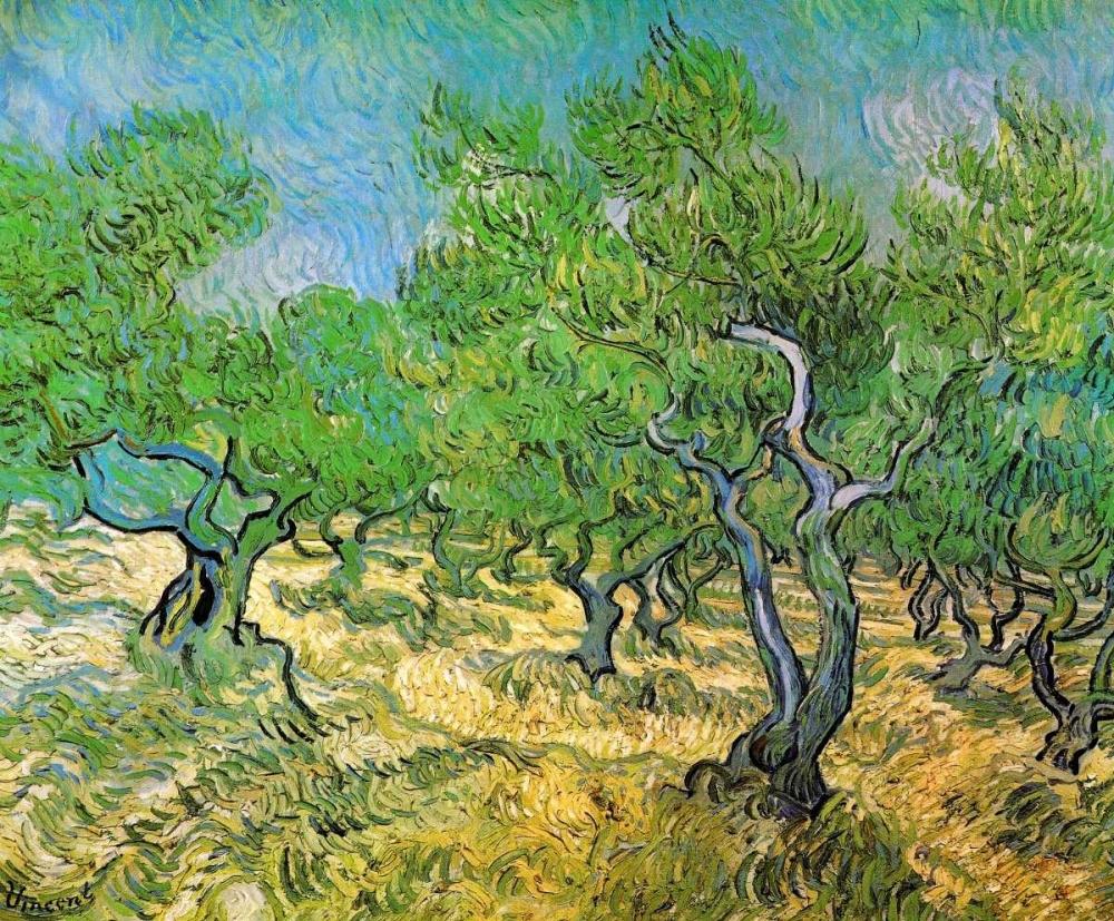 konfigurieren des Kunstdrucks in Wunschgröße Olive Grove von Van Gogh, Vincent