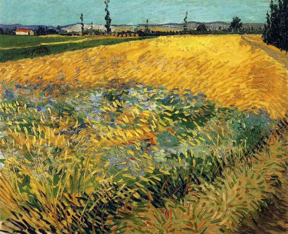 konfigurieren des Kunstdrucks in Wunschgröße Wheatfield 1888 von Van Gogh, Vincent