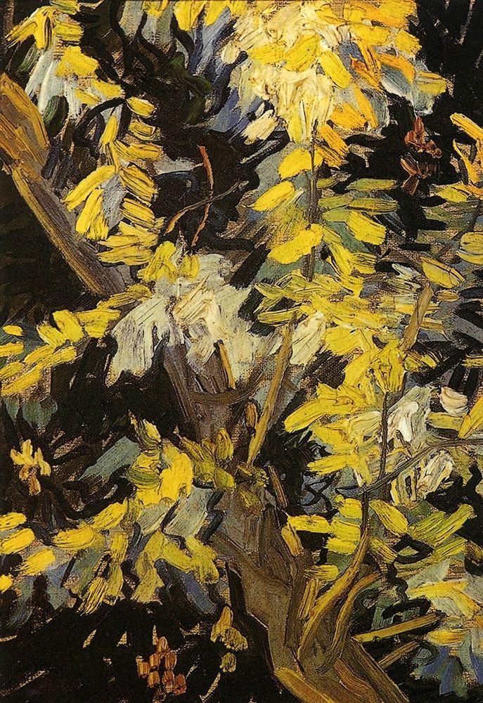konfigurieren des Kunstdrucks in Wunschgröße Blossoming Acacia Branches von Van Gogh, Vincent