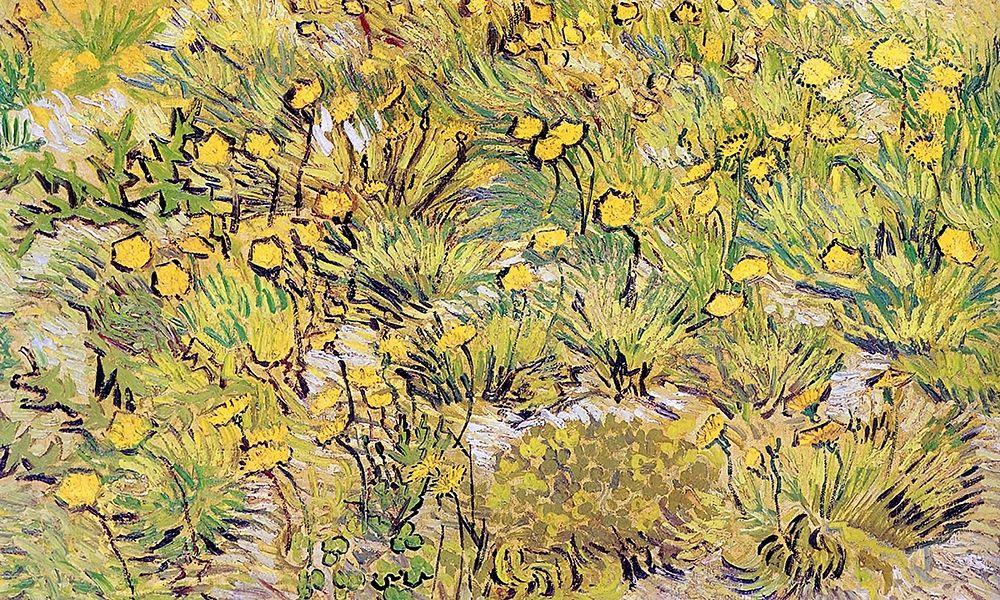 konfigurieren des Kunstdrucks in Wunschgröße Field Of Yellow Flowers von Van Gogh, Vincent