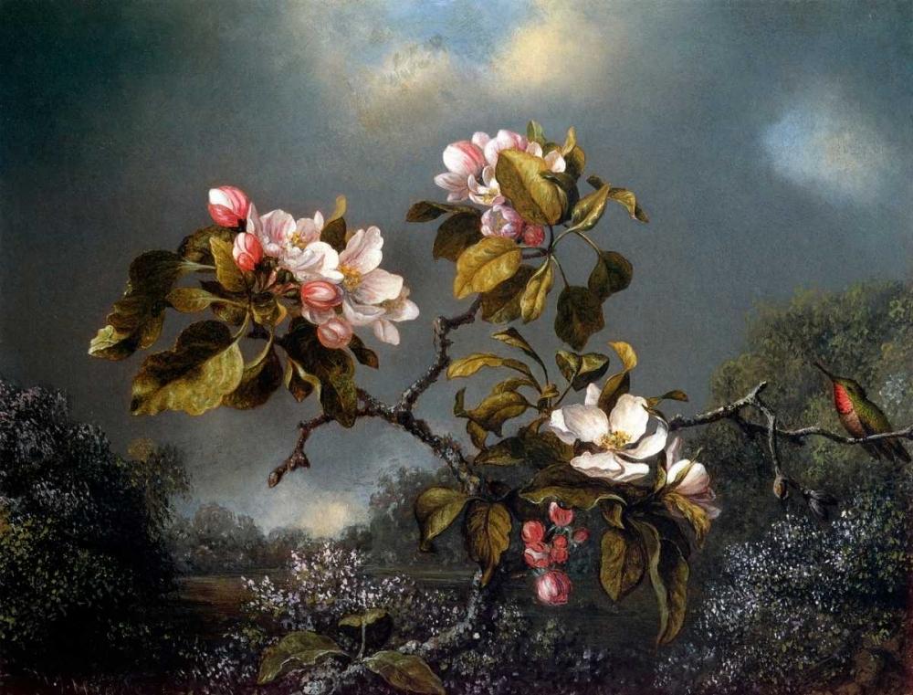 Apple Blossom And Hummingbird von Heade, Martin Johnson <br> max. 112 x 84cm <br> Preis: ab 10€