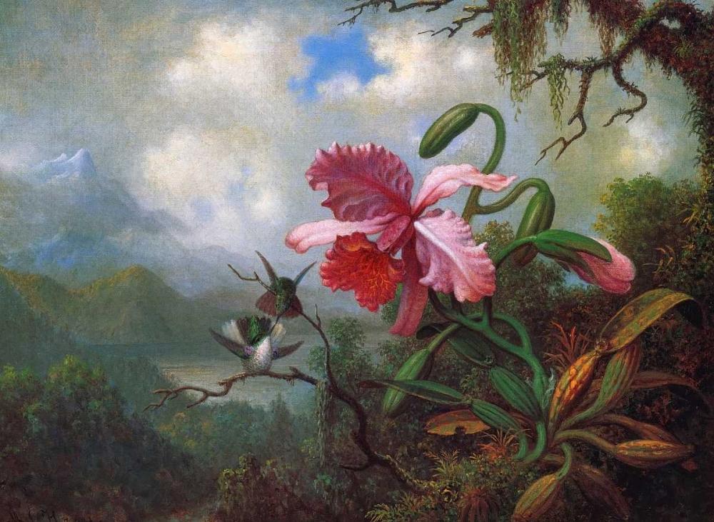 Orchid And Hummingbirds Near A Mountain Lake von Heade, Martin Johnson <br> max. 112 x 81cm <br> Preis: ab 10€
