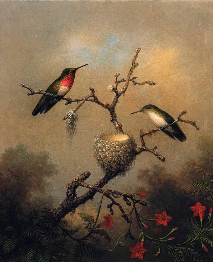 konfigurieren des Kunstdrucks in Wunschgröße Ruby Throated Hummingbird von Heade, Martin Johnson