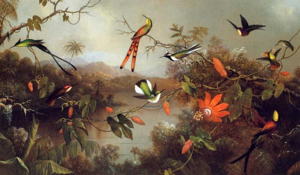 Tropical Landscape With Ten Hummingbirds von Heade, Martin Johnson <br> max. 112 x 64cm <br> Preis: ab 10€
