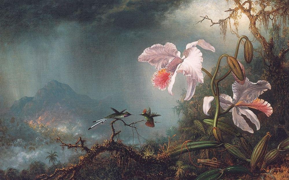 konfigurieren des Kunstdrucks in Wunschgröße Two Fighting Hummingbirds With Two Orchids von Heade, Martin Johnson