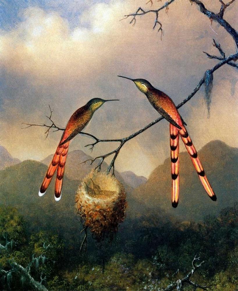 konfigurieren des Kunstdrucks in Wunschgröße Two Hummingbirds With Their Young von Heade, Martin Johnson