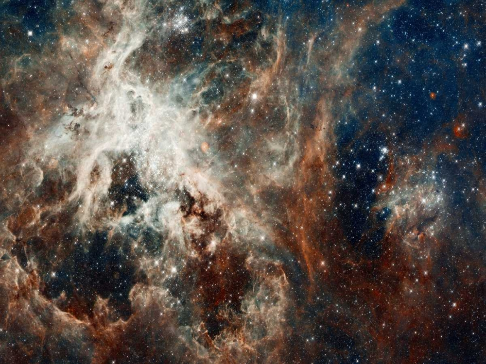 Tarantula Nebula - Compressed Version von NASA <br> max. 155 x 117cm <br> Preis: ab 10€