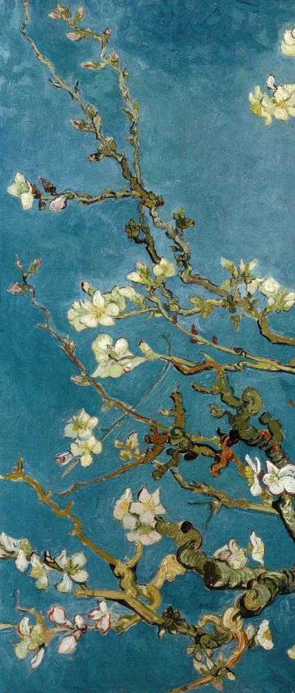 konfigurieren des Kunstdrucks in Wunschgröße Blossoming Almond Tree - left von Van Gogh, Vincent