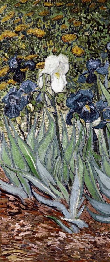 konfigurieren des Kunstdrucks in Wunschgröße Irises - left von Van Gogh, Vincent