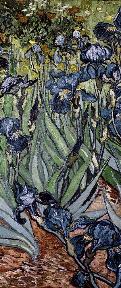 konfigurieren des Kunstdrucks in Wunschgröße Irises (center) von Van Gogh, Vincent