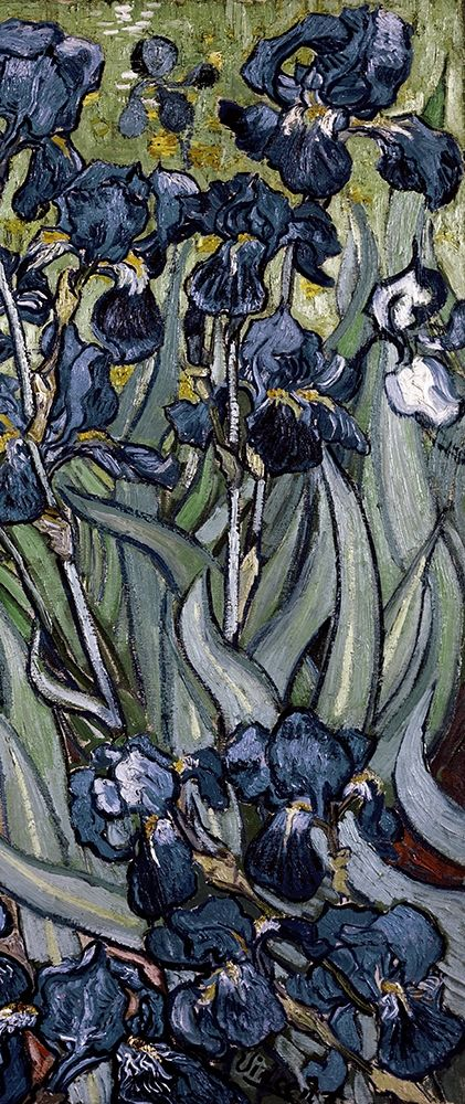 konfigurieren des Kunstdrucks in Wunschgröße Irises (right) von Van Gogh, Vincent