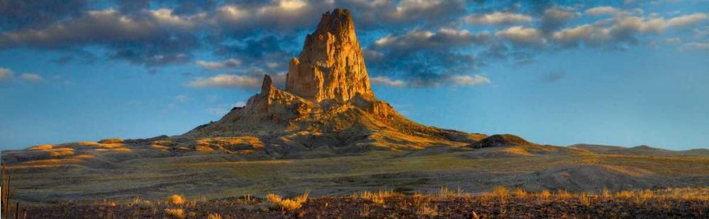 konfigurieren des Kunstdrucks in Wunschgröße Agathla Peak, the basalt core of an extinct volcano, Monument Valley Navajo Tribal Park, Arizona von Fitzharris, Tim