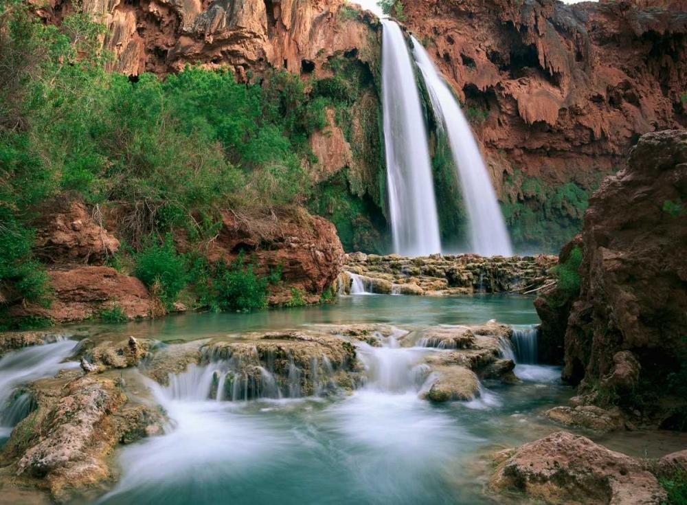 konfigurieren des Kunstdrucks in Wunschgröße Havasu Creek, lined with Cottonwood trees, Havasu Falls, Grand Canyon, Arizona von Fitzharris, Tim