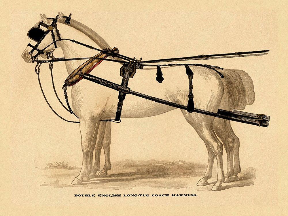 konfigurieren des Kunstdrucks in Wunschgröße Saddles and Tack: Double English Long-Tug Coach,Sport,Competition,Sports,Play,win,score Harness von Unknown