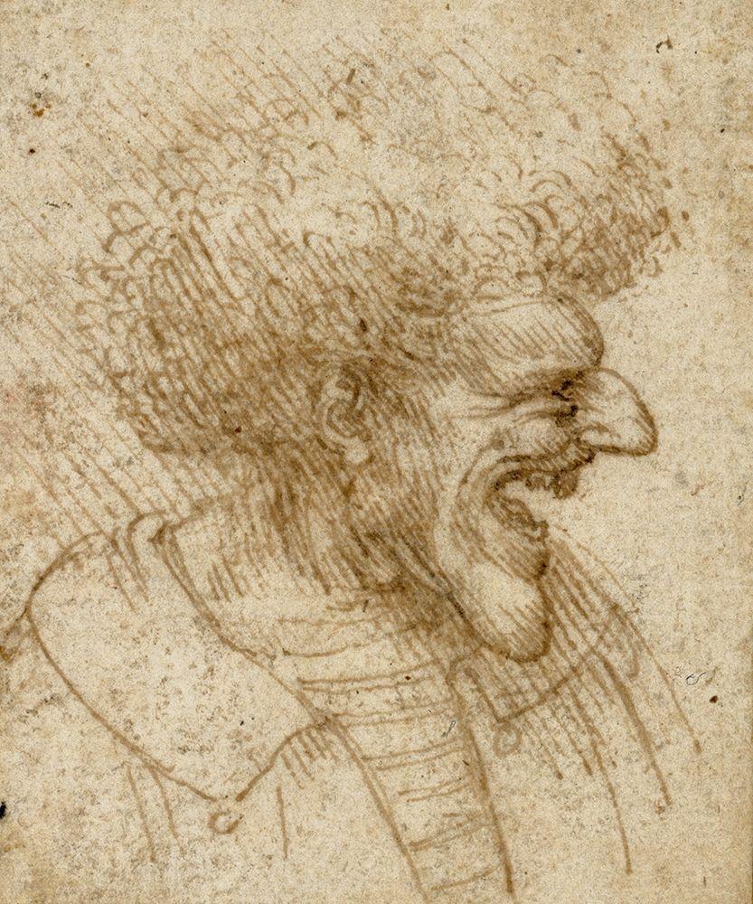konfigurieren des Kunstdrucks in Wunschgröße Caricature of a Man with Bushy Hair von Da Vinci, Leonardo
