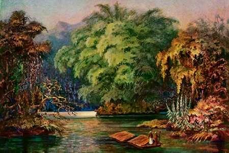 konfigurieren des Kunstdrucks in Wunschgröße Riesenbambus von Ceylon Fahrt auf dem Schwarzen Fluß 'Kalu Ganga' von Haeckel, Ernst