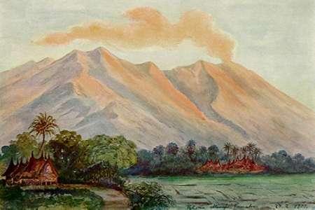 konfigurieren des Kunstdrucks in Wunschgröße Riesen-Myrte von Ceylon Urwald von Horton-Plains von Haeckel, Ernst