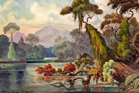 konfigurieren des Kunstdrucks in Wunschgröße Urwald am Blauen Fluß Kelany-Ganga, Ceylon von Haeckel, Ernst