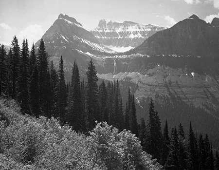 konfigurieren des Kunstdrucks in Wunschgröße Trees, Bushes and Mountains, Glacier National Park, Montana - National Parks and Monuments, 1941 von Adams, Ansel