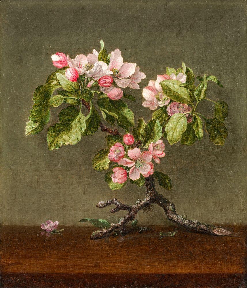 konfigurieren des Kunstdrucks in Wunschgröße Apple Blossoms von Heade, Martin Johnson