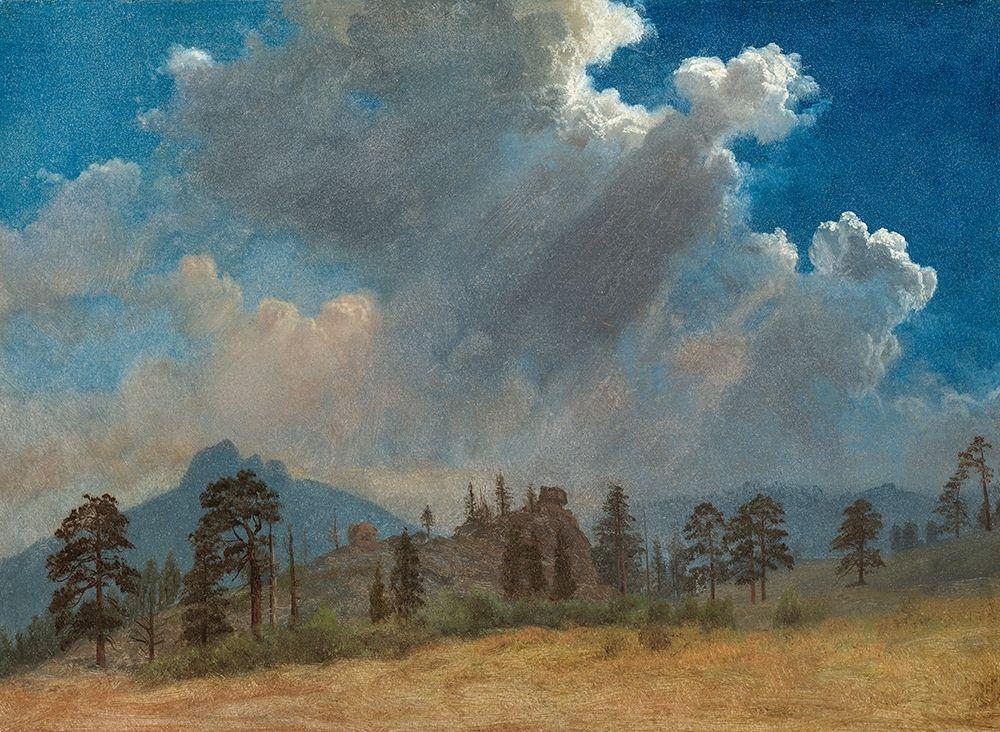 konfigurieren des Kunstdrucks in Wunschgröße Fir Trees and Storm Clouds von Bierstadt, Albert