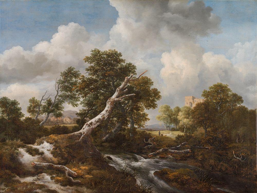 Ruisdael, Jacob van