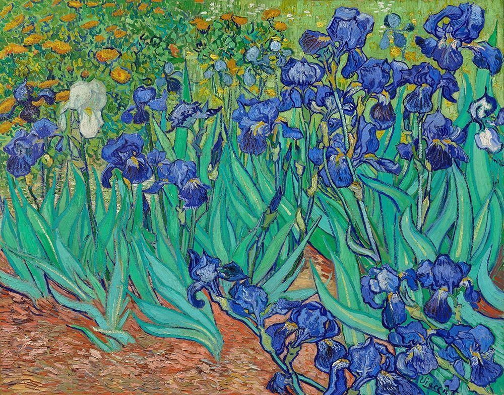 konfigurieren des Kunstdrucks in Wunschgröße Irises (1889) von Van Gogh, Vincent