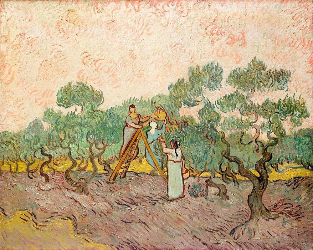 konfigurieren des Kunstdrucks in Wunschgröße Women Picking Olives (1889) von Van Gogh, Vincent