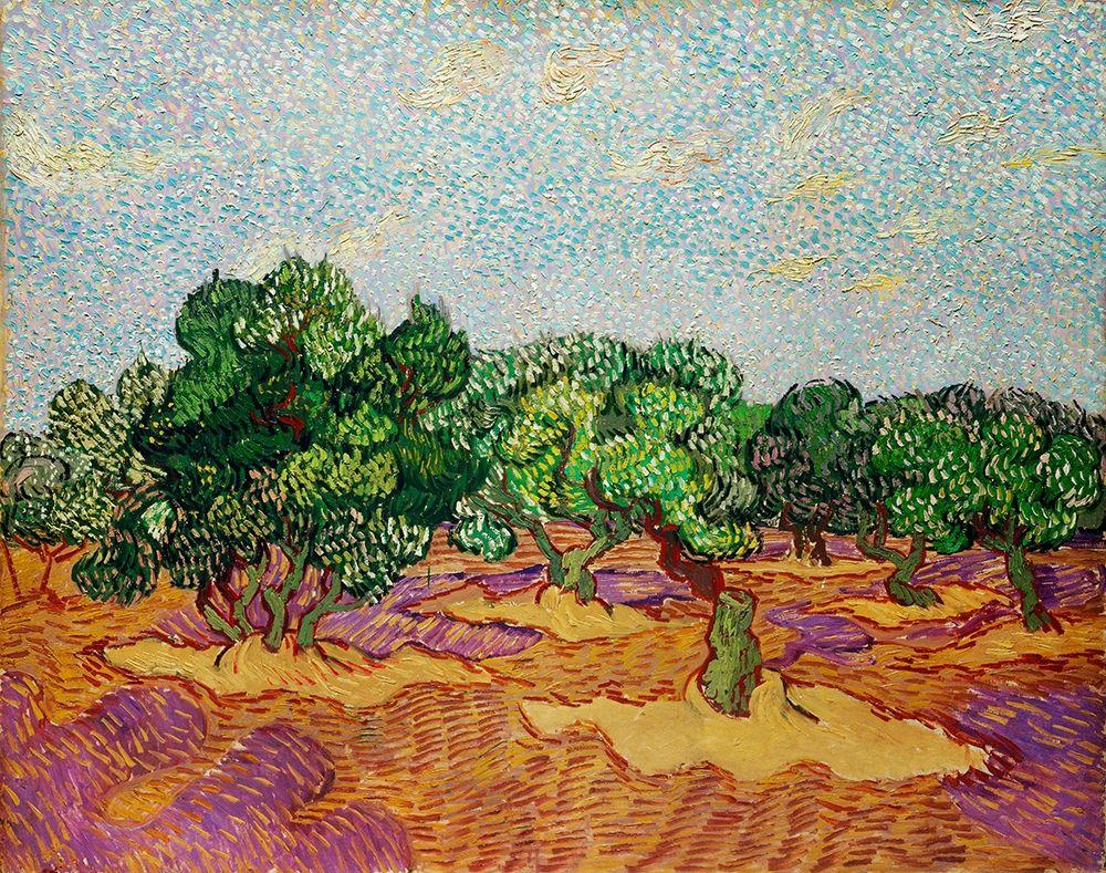 konfigurieren des Kunstdrucks in Wunschgröße Olive Trees (1889) von Van Gogh, Vincent