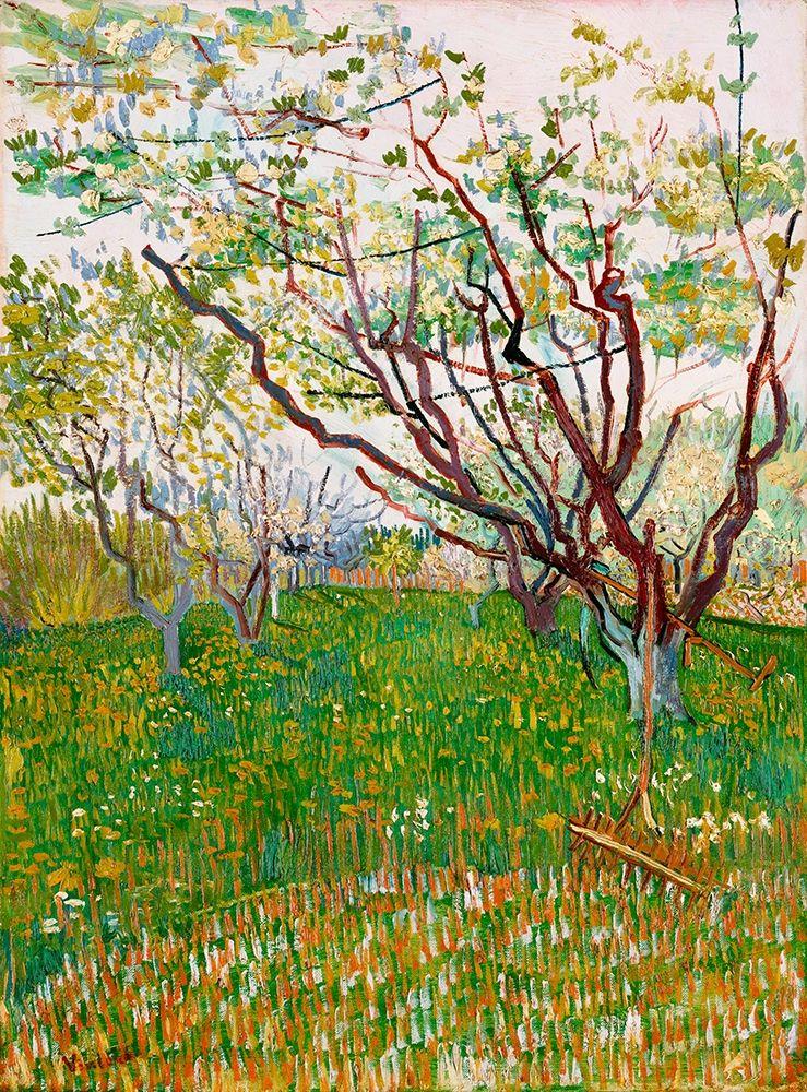 konfigurieren des Kunstdrucks in Wunschgröße The Flowering Orchard (1888) von Van Gogh, Vincent