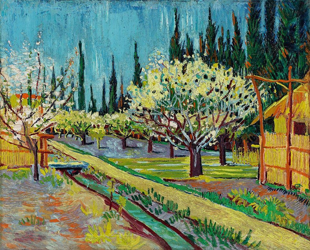 konfigurieren des Kunstdrucks in Wunschgröße Orchard Bordered by Cypresses (1888) von Van Gogh, Vincent