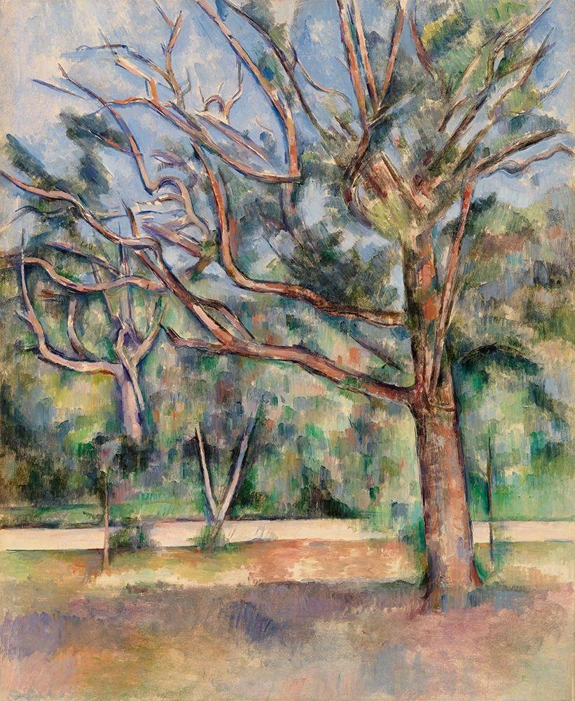 konfigurieren des Kunstdrucks in Wunschgröße Trees and Road von Cezanne, Paul