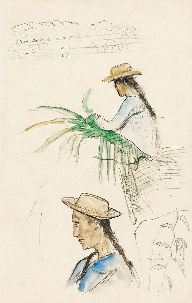 konfigurieren des Kunstdrucks in Wunschgröße Sketches of Figures, Pandanus Leaf, and Vanilla Plant von Gauguin, Paul