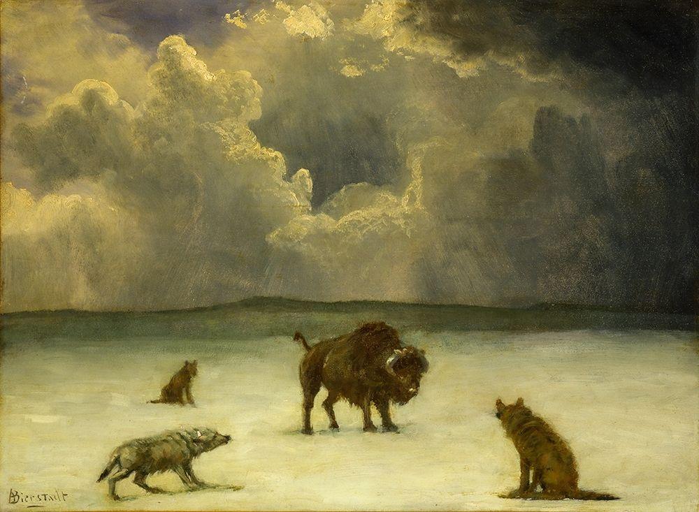 konfigurieren des Kunstdrucks in Wunschgröße Trapped von Bierstadt, Albert