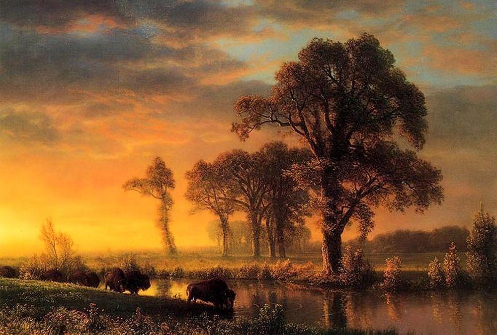 konfigurieren des Kunstdrucks in Wunschgröße Western Kansas von Bierstadt, Albert